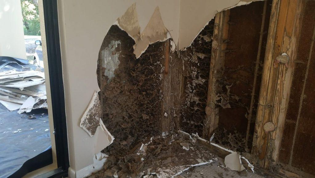 Marriott constructions-Termite repairs-slide1